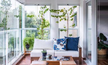 Conheça as melhores espécies de plantas para se ter em casa