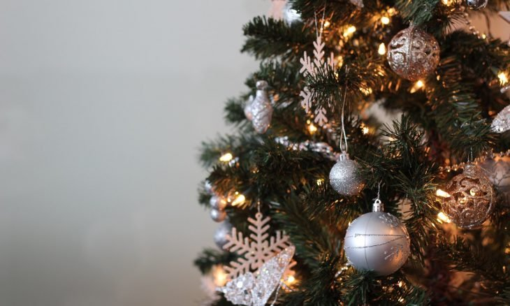 Será seguro comprar uma árvore de Natal de verdade esse ano?
