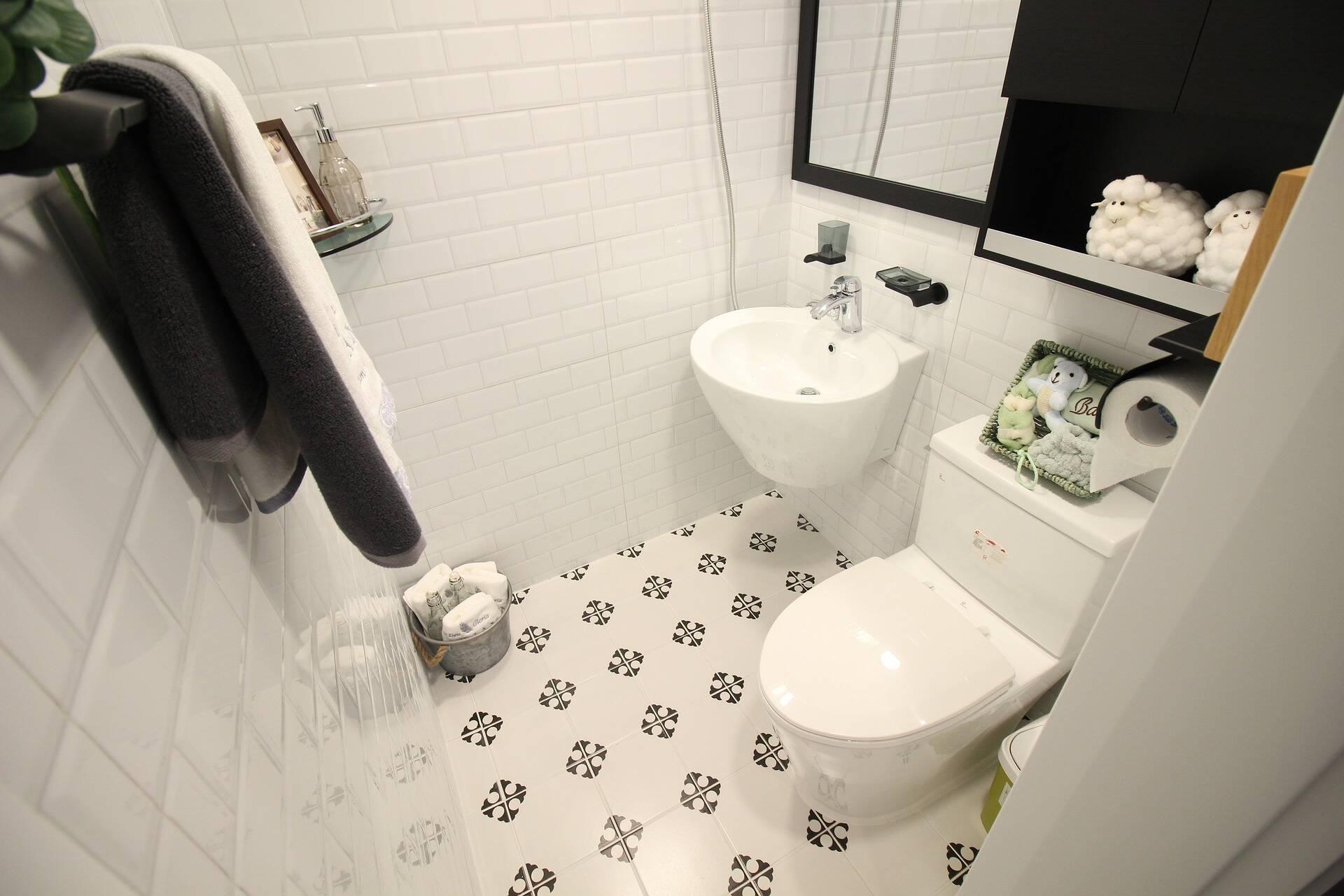 Limpeza de casa: vaso sanitário