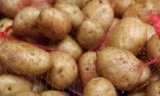 Saco de batatas. Crédito: Antara Verma