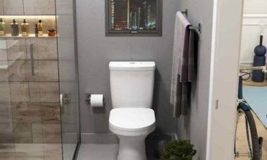 Como evitar o entupimento do vaso sanitário. Foto: Divulgação/Celite