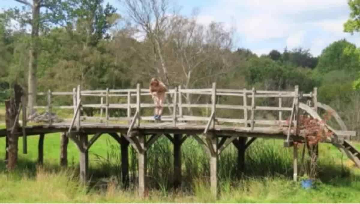 Ponte do Ursinho Pooh está à venda. Imagem: Reprodução / Summers Place Auctions